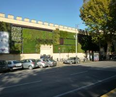 Giardino Verticale da esterno realizzato da Menotti Melani.