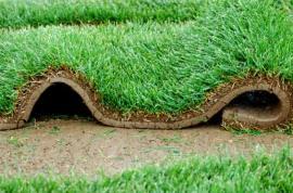 I tappeti erbosi per le pareti verdi
