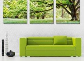 Arredamento soggiorno parete verde