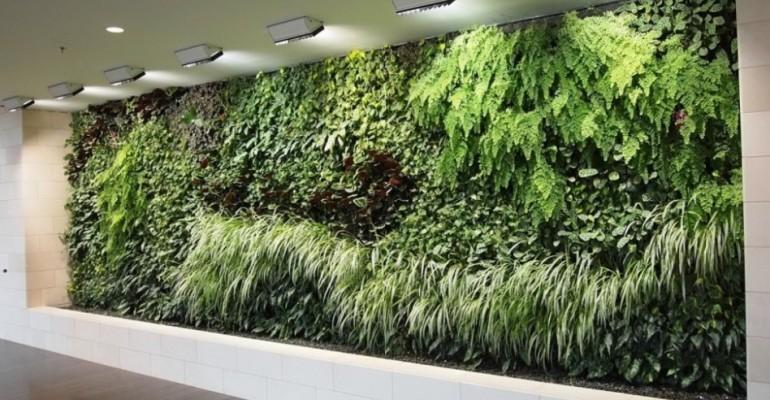 Paretiverdi l illuminazione artificiale delle pareti verdi da interno tipologie e - Giardino verticale in casa ...