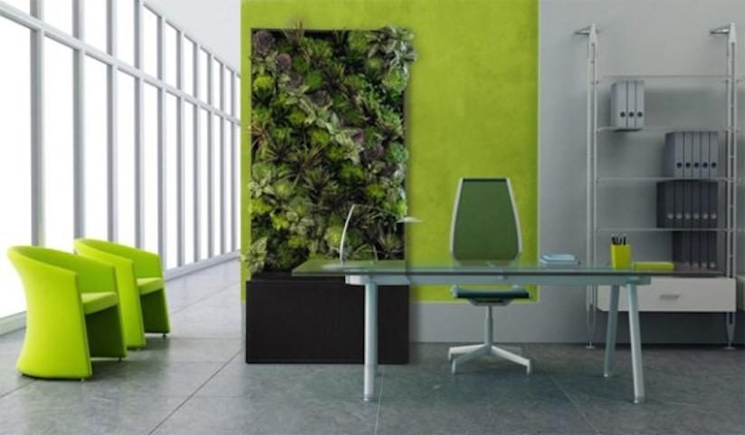 Parete Verde Ufficio : Paretiverdi il microclima: che cosè e come migliora con le pareti